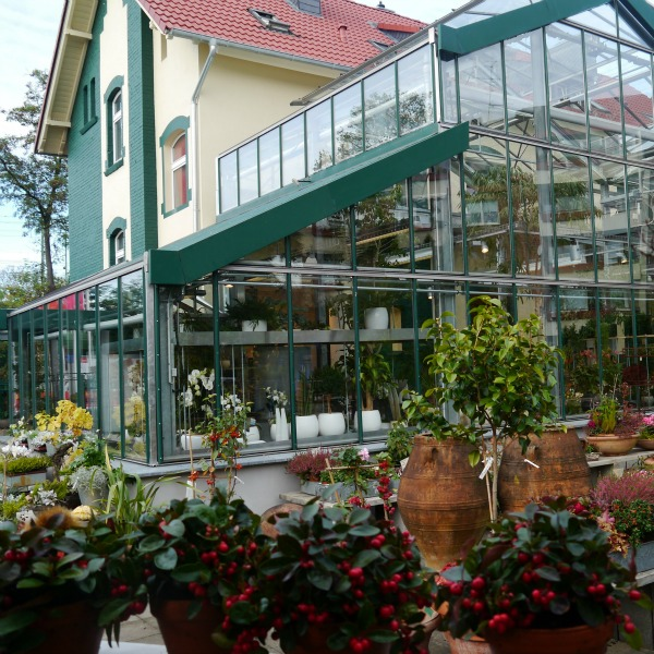 Innenhof-Blumen-Bender-Neuss