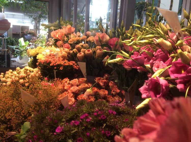 Schnittblumen-einkaifen-bei-Blumen-Bender